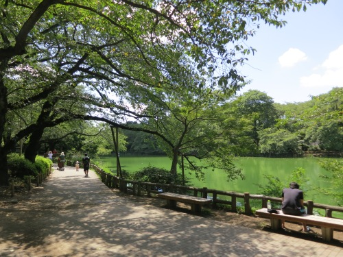 Inokashira Park in the heart of the neighborhood