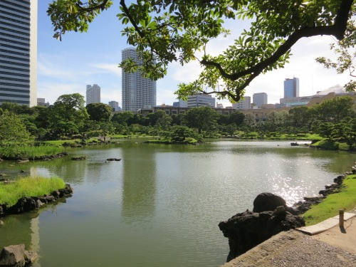 Reflections of the city in the Kyu-shiba-rikyu gardens