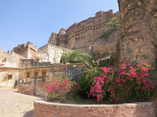 Mehrangarh 44 - Fort over Flowers