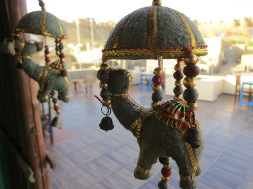 Hostel 3 - Camel Decorations