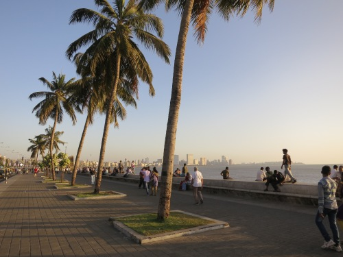 Marine Drive 11 - Palm Trees
