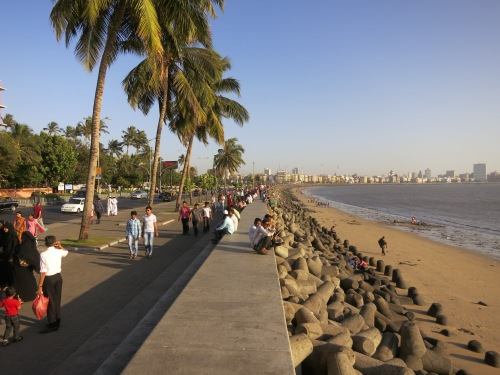 Marine Drive 8 - Palm Trees