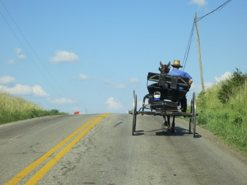 Back home in Ohio, another interesting aspect of the area in which my family lives is the significant Amish population.  You're technically not supposed to take pictures of them, but I figured one quick shot of an Amish buggy going down the road couldn't hurt