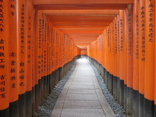 A morning hike through the Fushimi Inari shrine to the Southeast of the city
