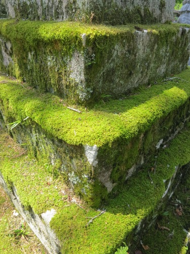 The fact that moss covers every exposed surface is a testament to how rainy and humid this part of Japan can be