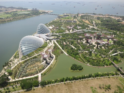 Looking down upon the Gardens by the Bay