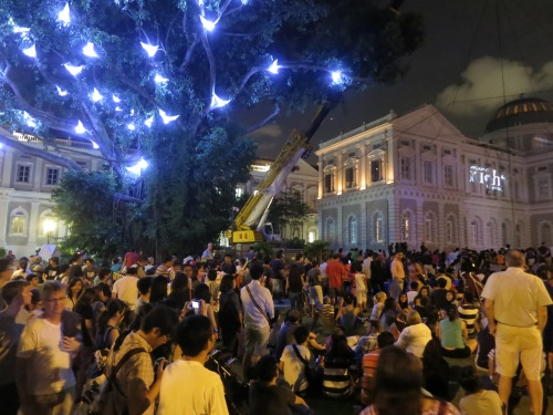 My visit happened to coincide with the Singapore Night Festival, where a variety of art exhibitions and musical performances were the highlight